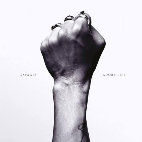 43177-adore-life